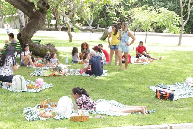 Várias pessoas sentadas na grama como um piquenique no evento Dia da Familia