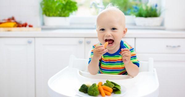 O que dizem os nutricionistas sobre o método BLW de introdução alimentar?